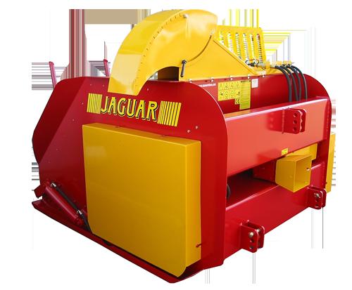 pallipurusti Jaguar
