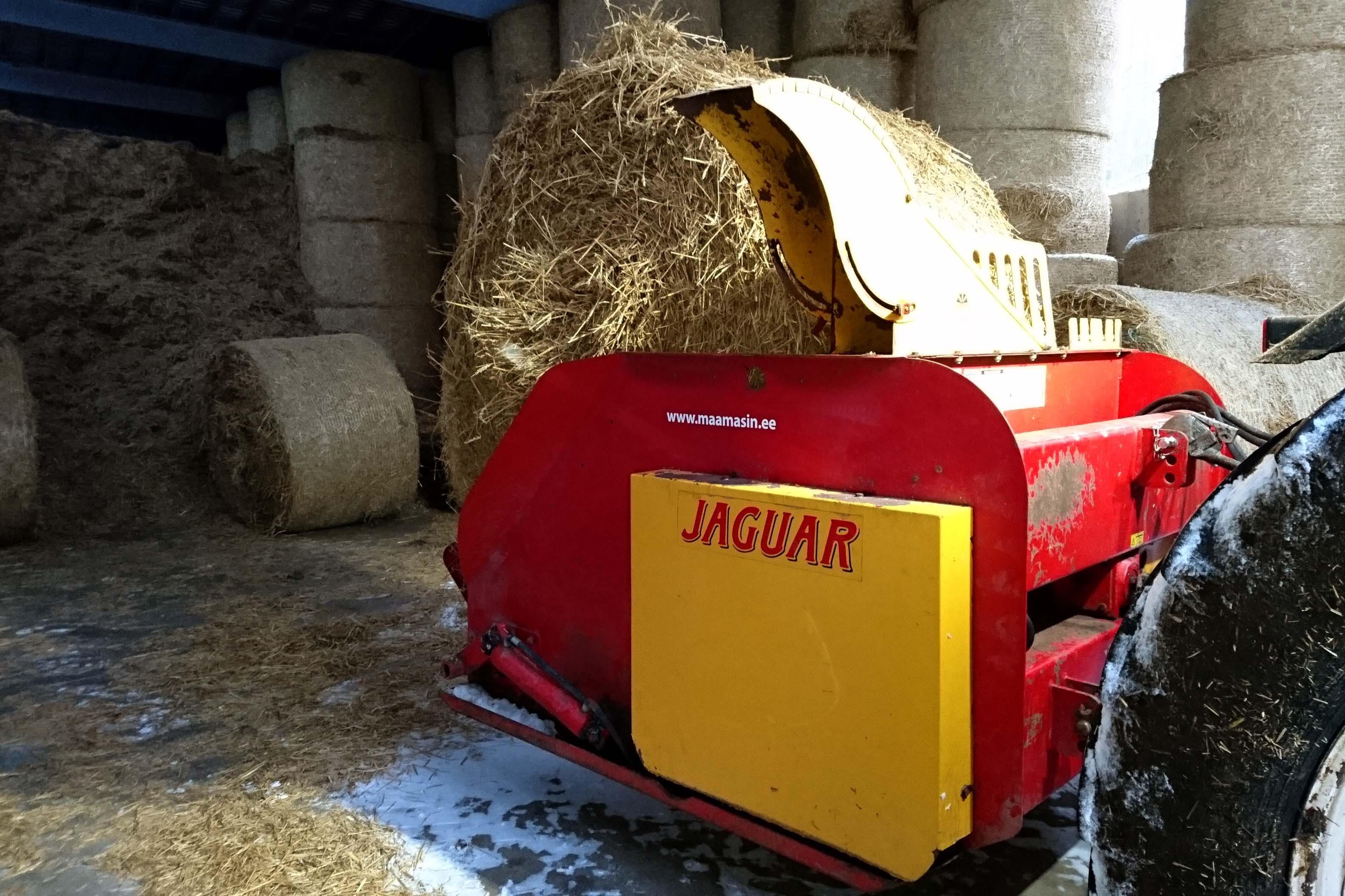Jaguar_põhurullidega
